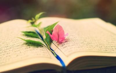 leaf-pink-on-mushaf-quran